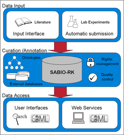 a picture about Sabo-Rk's Workflow